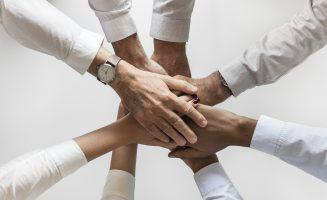 Gemeinsame Ideen & Lösungen